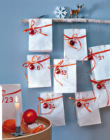 An Advent calendar made from numbered bags on a branch