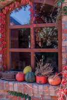 Pumpkins And Pot With Heather In Front Of The Window