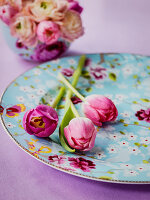 Tulips on floral plate with vase of runuculas behind