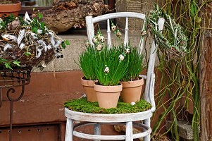 Quail eggs on plant stakes in potted chives