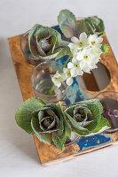 Tischdekoration mit Kohl und Milchsternblüte