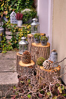 Autumnal decoration with lanterns and cones on tree stumps