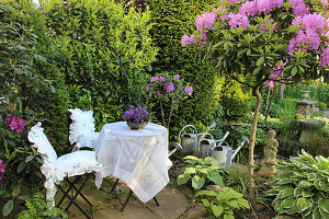 Small terrace with seating next to Rhododendron