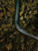 Bird's-eye view of car on road running through woods