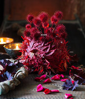 Red-dyed small teasel seed heads and Japanese maple leaves