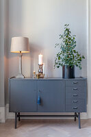 Table lamp and houseplant on dark grey sideboard