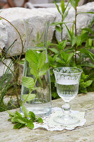 Carafe of water with mint