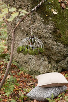 Lampshade draped with moss hung from branch in autumnal woods