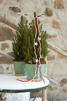 Tiny conifers decorated with felt yarn in mint-green metal buckets