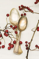 Haws and silver spoons