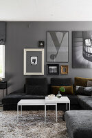 Sofa combination, long-pile rug and gallery of pictures in grey living room