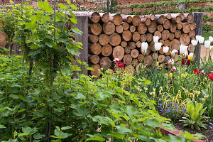Flowerbed and stacked tree trunks in garden