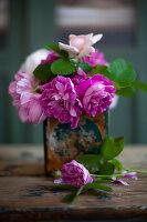 Pinkfarbene Rosen in Vintage Vase
