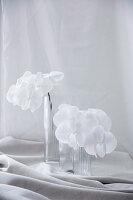 Weiß blühende Orchideenzweige in Glasvasen auf gerafftem Stoff