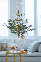 Small Christmas tree decorated with gold baubles and fairy lights behind couch and glass tea set on side table