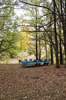 Lange Tafel mit blauer Tischdecke im herbstlichen Wald