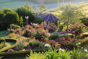 Garden on slope with summerhouse, standard roses and box hedges