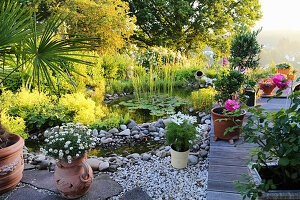 Garden pond surrounded by potted plants on stone flags, gravel and wooden deck