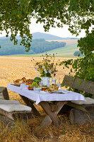 Gedeckter Holztisch mit Bänken unter Linde, im Hintergrund abgeerntete Felder
