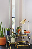 Arrangement of house plants and retro tables