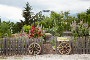 Old wagon wheels flanking entrance to garden below rose arch