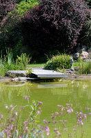 Steg am Teich im sommerlichen Garten