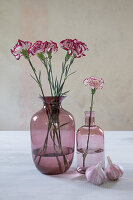 Carnations in dusky-pink glass vases and fresh garlic bulbs