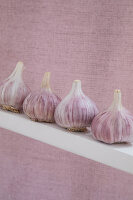 Row of garlic bulbs against pink background