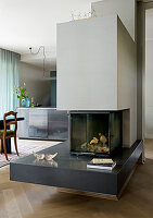 Modern fireplace in open-plan interior