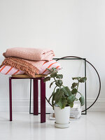 Potted kalanchoe, cushions and blankets on stool and picture frames on white floor