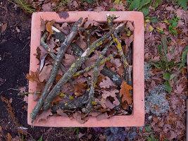 Terracotta-Kübel mit Herbstlaub und Zweigen als Winterschutz