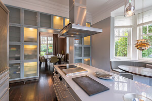 Long island counter and floor-to-ceiling frosted-glass cupboards in elegant kitchen