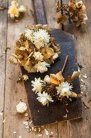 Getrocknete Blüten von Hortensie und Strohblumen als Blumendeko