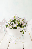 Pink campanula in bowl decorated with string of pompoms