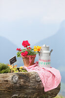 Milk churn and potted geranium on wooden trough in the Alps
