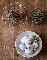 Ostereier und Kakteen auf Holztisch