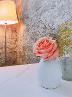 Rose in white ceramic vase