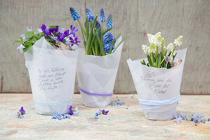 Spring flowers wrapped in parchment paper with handwritten mottoes