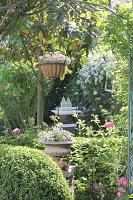 Blick durch Rosenbogen auf Vorgarten mit Magnolie Grandiflora und Sitzplatz