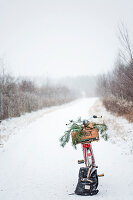 Wooden crate of pine branches on bicycle and backpack in the snow