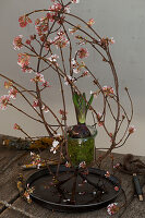 Ikebana arrangement of Bodnant viburnum twigs and hyacinth in glass jar