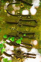 Vintage garden tools on mossy stone