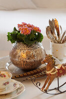 Vintage-style arrangement with primulas in silver vase