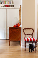 Black cat in front of antique chair with red and white upholstery