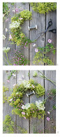 Tying a wreath of lady's mantle, mallows, Queen Anne's lace and gypsophila