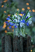 Blue and white bouquet of snowdrops and blue stars