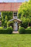 Thoughtful planting has transformed the garden of this charming family home