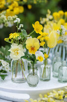 Small bottles with spring flowers: horny violet, daffodil, buttercup, tulip, white forget-me-not and ragwort