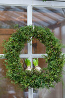 Wreath of juniper with hyacinth bulbs on glass door