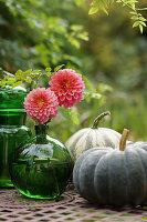 Dahlienblüten in Kugelvase und Speisekürbisse